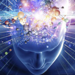 (ebook) - Il punto cieco del materialismo scientifico